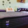Maple plush mattress